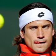 Прогноз. Теннис. ATP. Станислав Вавринка – Давид Феррер. 18 ноября 2015