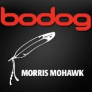 Букмекерская контора Bodog