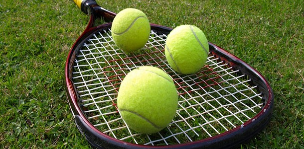 Программа ставок на теннис