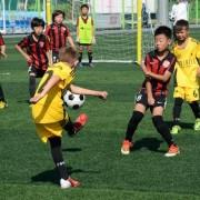 Тонкости ставок на азиатский футбол