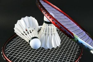 b635673f63c63a777df4722cd9dbee10_badminton